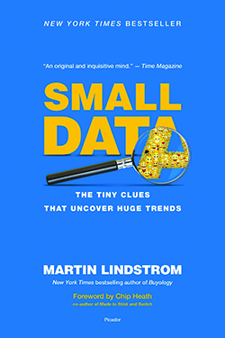BNH Book Review: Small Data