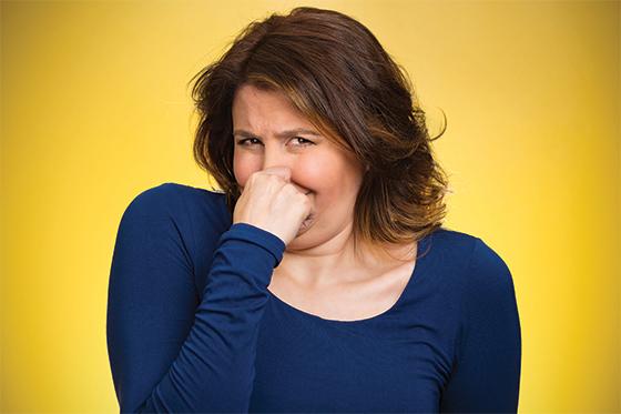 https://www.businessnhmagazine.com/UploadedFiles/Images/Smell-Article.jpg